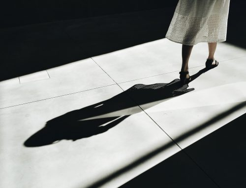 Shadow Work for a Sustainable Lifestyle with Impact